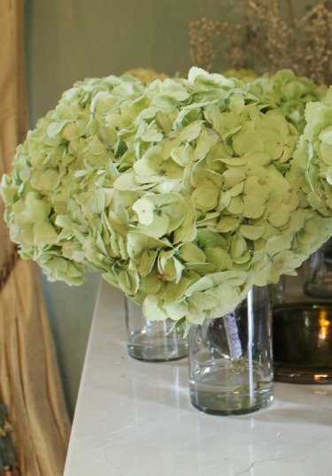 Green Antique Hydrangeas, Lace on Bouquets, Bella Donna Chapel, Stonebridge Country Club, Posh Floral Designs, Angie Strange