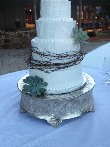 Melody Bradley Cakes, Rustic Cakes, Succulents on Cakes, Posh Floral Designs, Lace on Brides cake table