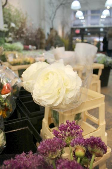Ranuculus, Large Ranuculus, New York Flower Market, Flower Market