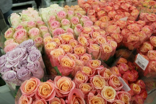 Purple Roses, White Roses, Coral Roses, Pink Roses, New York Flower Market, Flower Markets, Posh Floral Designs