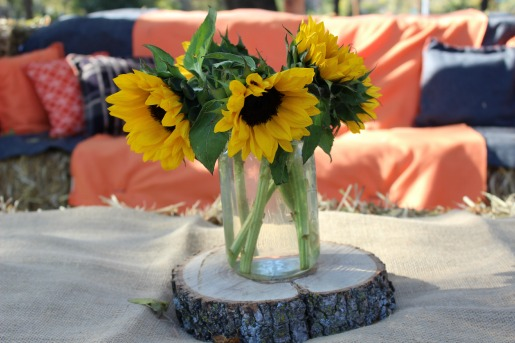 Bonton Honey, North Dallas Honey, Launch Party, Outdoor Party Decor, Sunflowers, Posh Floral Designs