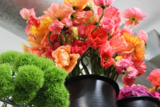 Poppies, Coral Poppies, Dianthus, Green Flowers, Pink Poppies, Coral Poppies, New York Flower Market, Flower Market, Posh Floral Designs