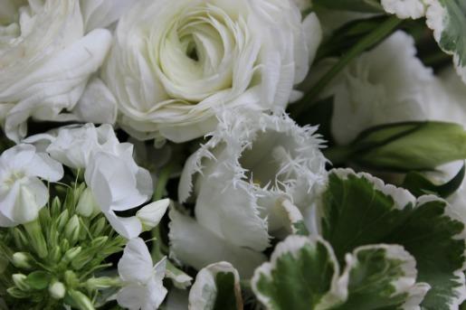 Garden Flower Ideas, Vintage Flowers, Centerpieces Ideas, White flowers, White Fringe Tulips, White Tulips, Greenery in flowers, Posh Floral Designs