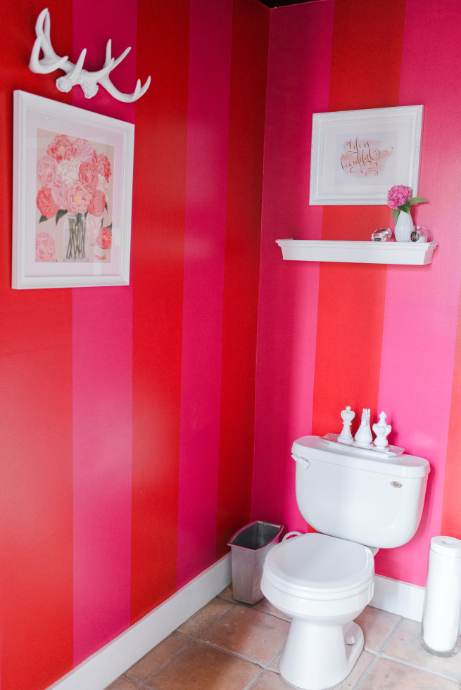 Red and Pink Stripe Bathroom | Flower Pictures | Toilet Paper Holders | Beautify a Trash Can | DIY Tile Mirror | Bud vase ideas | White Sleeves